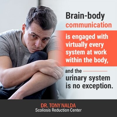 brain body communication is engaged with