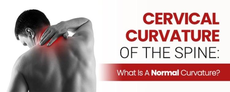 cervical curvature